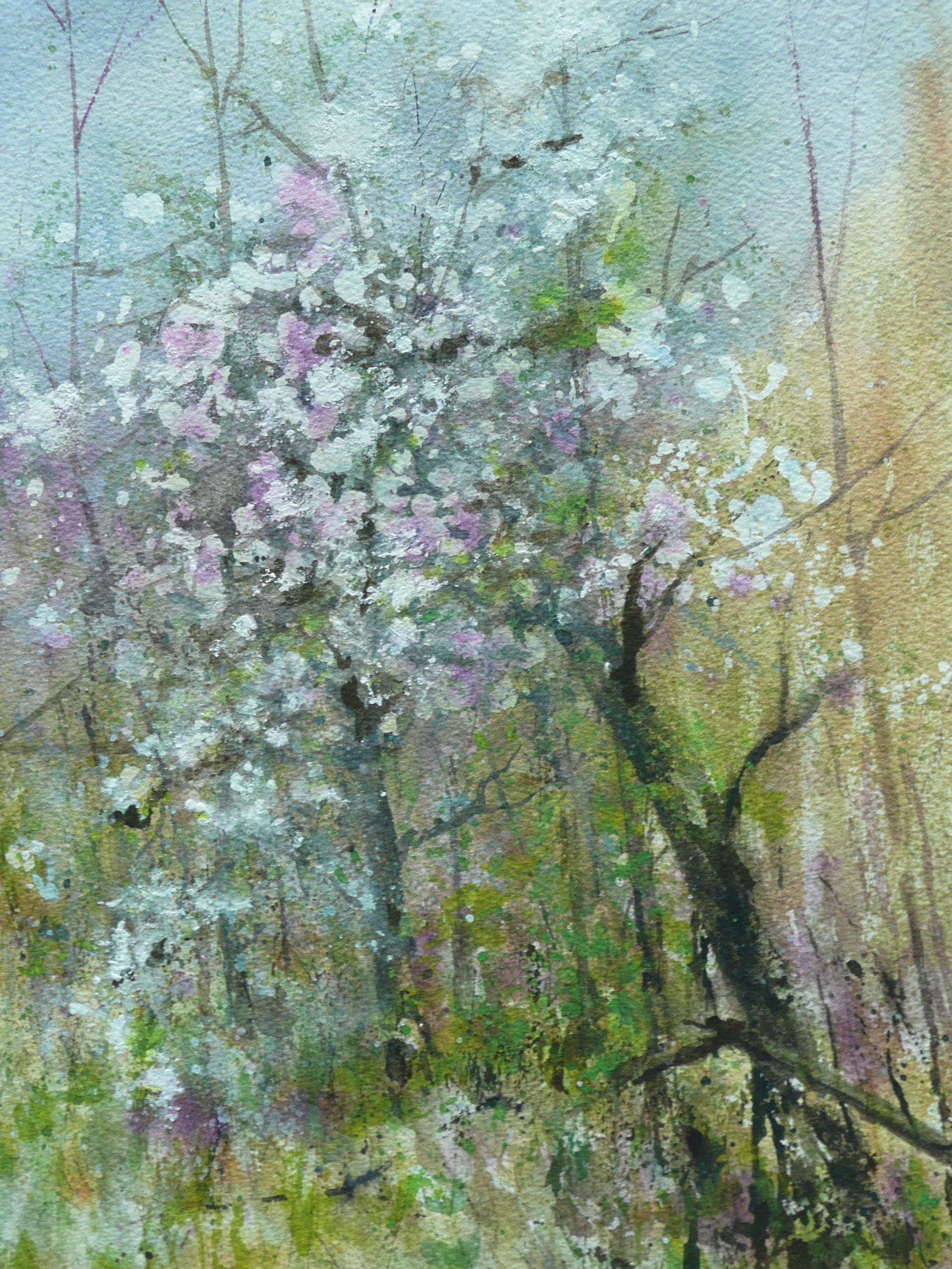 Apple Blossom painting